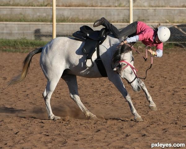 funny horse fails - 600×480